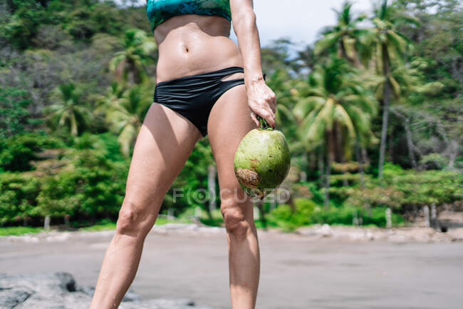 Cropped unrecognizable woman with coconut looking away while standing on stone against palm on sunny day on tropical resort — Stock Photo