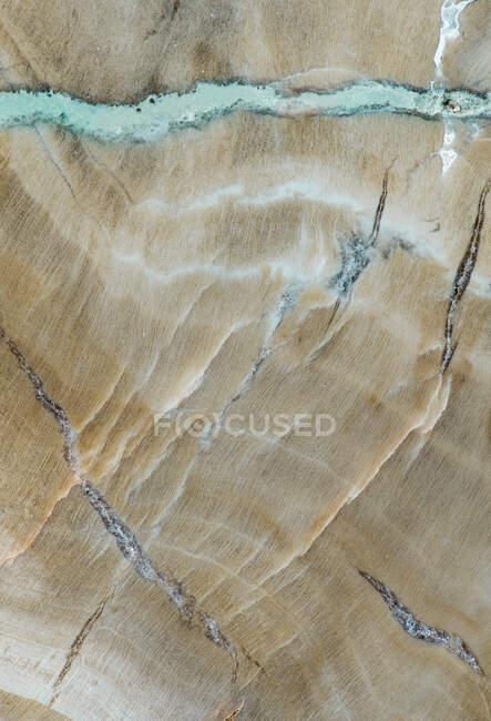 Textur der Makrofotografie von Mustern und Farben in einem Stück versteinertem Holz (Woodworthia-Arten) aus der Chinle Formation in Arizona; ca. 225 Millionen Jahre alt — Stockfoto