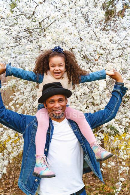 Contenido hombre étnico que lleva encantadora chica en los hombros bajo el árbol en flor en el césped en el parque - foto de stock