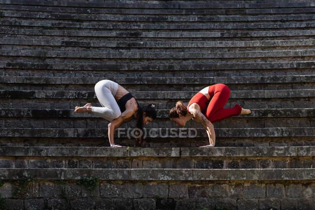 Товсті самиці балансують у позі Бакасани, практикуючи йогу разом на кам'яних сходах. — стокове фото
