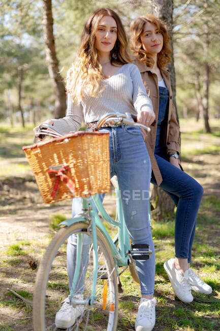 Full body of happy young girlfriends smiling and looking at camera on bicycle in sunny park in summer — Stock Photo
