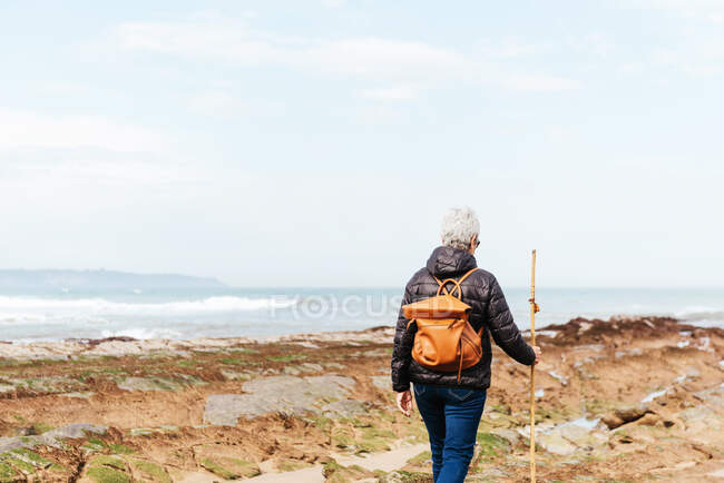 Back view of unrecognizable elderly female backpacker with trekking pole strolling on boulders against stormy ocean under cloudy sky — Stock Photo