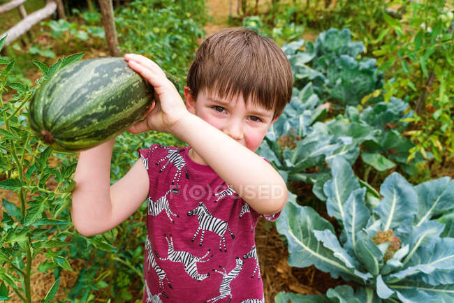 Sincere child with big zucchini looking at camera while standing between growing vegetables in countryside on summer day — Stock Photo