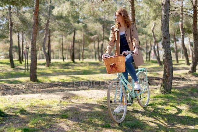 Ganzkörper junge Frau reitet Oldtimer-Fahrrad mit Weidenkorb aus Holz in sonnigem Park mit grünen Rasenflächen tagsüber — Stockfoto