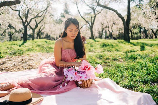 Mulher asiática pacífica em vestido rosa sentado em xadrez com flores florescendo em cesta de vime no jardim exuberante e olhando para baixo — Fotografia de Stock