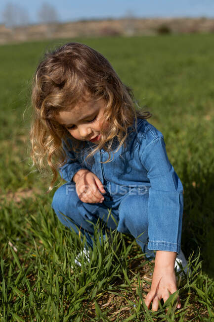 Lindo niño sentado en el campo verde en el día soleado y jugando con la hierba en verano - foto de stock