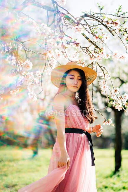 Mujer pacífica étnica en sombrero de paja y vestido de pie bajo flores fragantes en las ramas de los árboles en el huerto - foto de stock