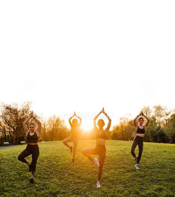 Compañía de hembras en forma equilibrándose en pose de árbol y practicando yoga juntas sobre césped en parque al atardecer - foto de stock