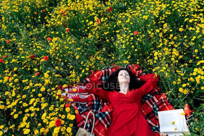 Зверху самки з закритими очима мають перерву від читання підручника на ковдрі з сумочкою серед цвітіння маргаритки протягом весняного літнього дня. — стокове фото