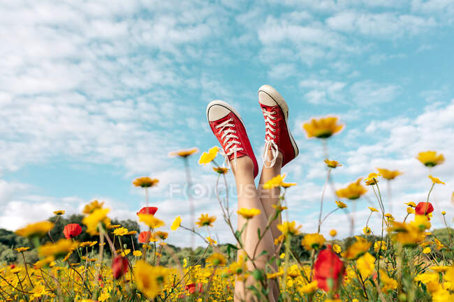Crop unrecognizable female in bright footwear lying with crossed legs among blossoming daisies under cloudy blue sky in countryside — Stock Photo