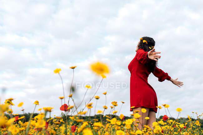 De baixo vista lateral da fêmea na moda em sundress vermelho e com coroa de flores de pé com os olhos fechados no campo florescente com flores amarelas e vermelhas com braços estendidos no dia quente de verão — Fotografia de Stock