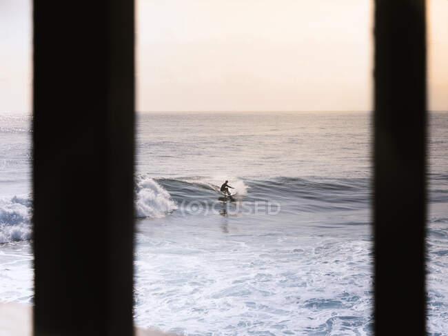 Surfista irreconocible montando olas de mar azul bajo el cielo rosado claro en la tarde - foto de stock