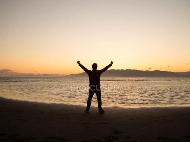 Назад вид силуэт мужчины путешественника с поднятыми руками наслаждаясь свободой, стоя на берегу моря на закате времени — стоковое фото