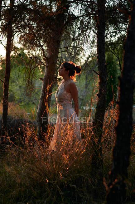 Full body of calm female in white dress standing at tree trunk in dark woods in calm sundown light - foto de stock