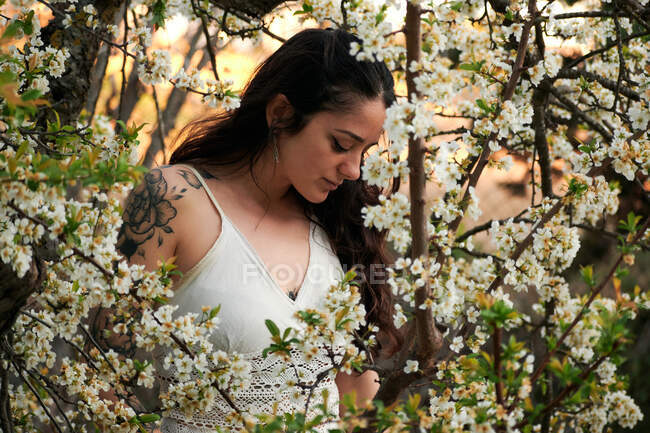 Young female with tattooed arm wearing white dress and standing in flowers of tree looking down - foto de stock