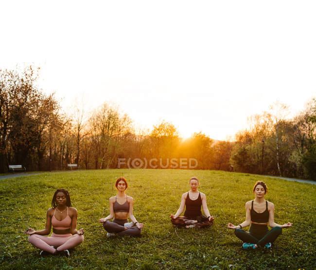 Компания различных безмятежных женщин, сидящих в Lotus позировать в парке и медитировать вместе с закрытыми глазами во время занятий йогой на закате летом — стоковое фото