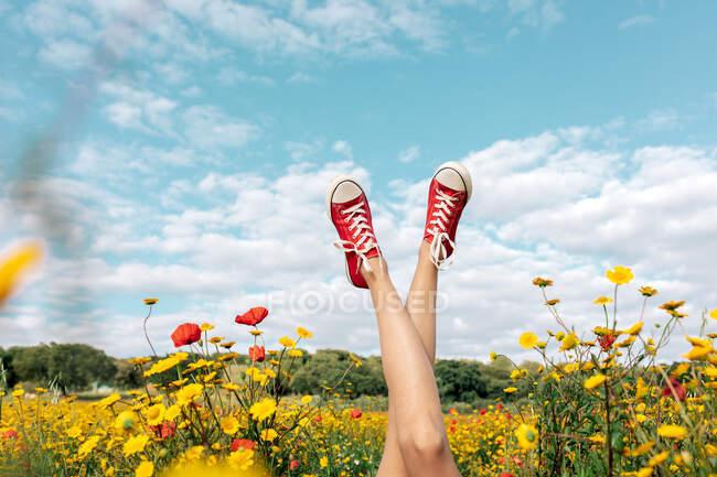 Colheita fêmea irreconhecível em calçado brilhante deitado com pernas cruzadas entre margaridas florescentes sob céu azul nublado no campo — Fotografia de Stock