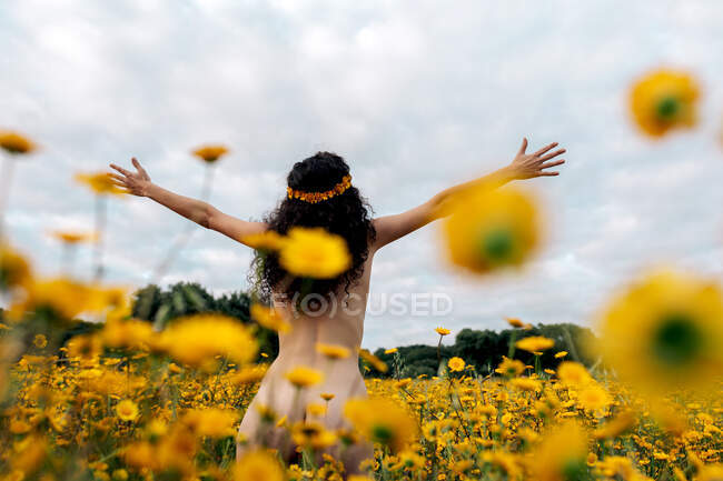 Back view of anonymous naked brunette in flower wreath enjoying meadow with blossoming daisies under cloudy sky in summer — Stock Photo