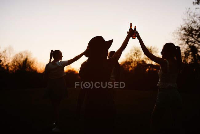 Gruppe fröhlicher Frauen trifft sich im Park und klappert Flaschen Bier, während sie gemeinsam das Sommerwochenende genießen — Stockfoto
