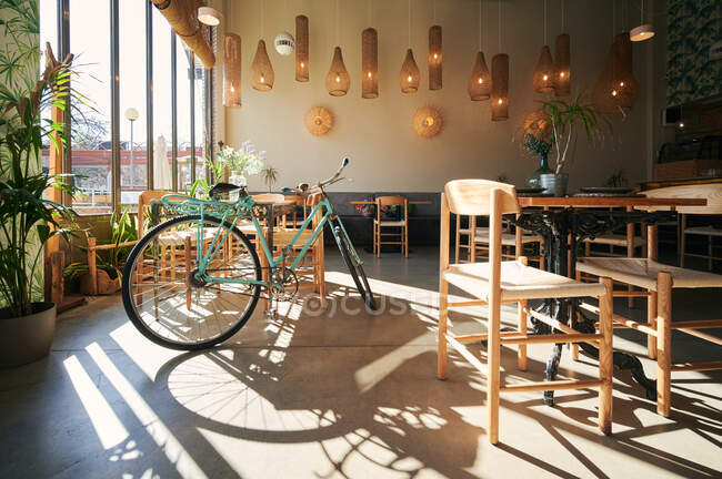 Comfortable chairs and wooden tables with potted plants placed in cozy restaurant lit by sunlight next to a bicycle — Stock Photo