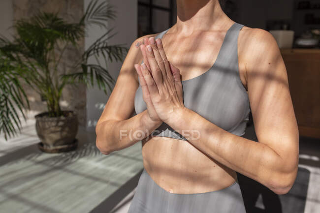 Обрежьте неузнаваемую женщину с молитвенными руками медитирующими в комнате с солнечным светом, практикуя йогу дома — стоковое фото