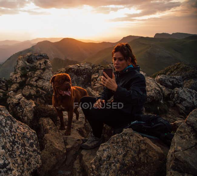 Caminhadas femininas usando smartphone para tirar selfie com cachorro de raça pura sentado em pedra em altas montanhas ao pôr do sol — Fotografia de Stock