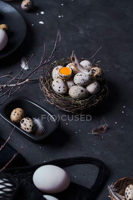 De acima mencionada composição de ovos de galinha crus em chapas e ovos de codorna em ninho em fundo preto — Fotografia de Stock