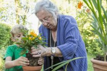 Grandmother repotting plant with her grandson — Stock Photo