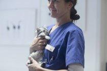 Veterinario che trasporta gatto — Foto stock