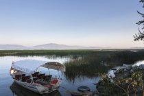 Лодки на якорь на озере трава — стоковое фото