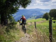 Mountain bike a cavallo su single trail — Foto stock