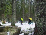 Двое мужчин беговых лыжах в регионе Шварцвальд — стоковое фото