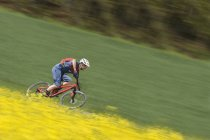 Mountain biker riding with speed in rapeseed field — Stock Photo