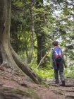 Ragazza escursioni sul singolo sentiero nella foresta nera, Feldberg, Germania — Foto stock