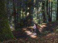 Donna matura sulla escursione a piedi nella foresta nera, Bad Wildbad, Baden-Württemberg, Germania — Foto stock