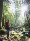 Жінка походи в чорному лісі, погано Liebenzell, Баден-Вюртемберг, Німеччина — стокове фото