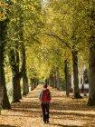 Caminhante feminina caminhando no parque na Floresta Negra, Bad Liebenzell, Alemanha — Fotografia de Stock