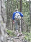 Заднього вигляду старший чоловік Піші прогулянки босоніж в середині Шварцвальда Баден-Вюртемберг, Німеччина — стокове фото