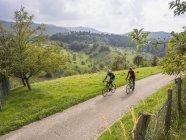 Двое мужчин едут на велосипедах по дороге через луг в Шварцвальд, Германия — стоковое фото