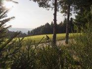 Зрілою людиною велосипед їзда на велосипеді в середній чорний ліс, Німеччині — стокове фото