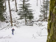 Girl snowshoeing in Black Forest, Germany, Europe — Stock Photo