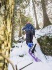 Вид сзади девочка, альпинизм, горнолыжный склон в регионе Шварцвальд, Германия, Европа — стоковое фото