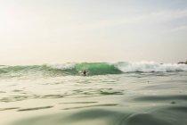 Plaisirs de l'homme dans l'eau de l'océan Indien, Sri Lanka — Photo de stock