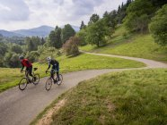 Two men riding bicycles on cycling tour on road through meadow in Black Forest, Germany — Stock Photo