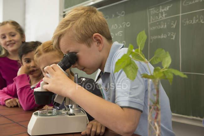 Учні школи дивлячись через мікроскоп — стокове фото