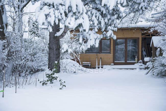 Árvores cobertas pela neve na casa rural — Fotografia de Stock