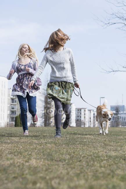 Freunde im Park mit Hund laufen — Stockfoto