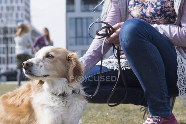 Teenager-Mädchen streicheln ihre Hund — Stockfoto