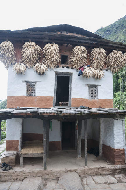 Traditional Nepalese house — Stock Photo