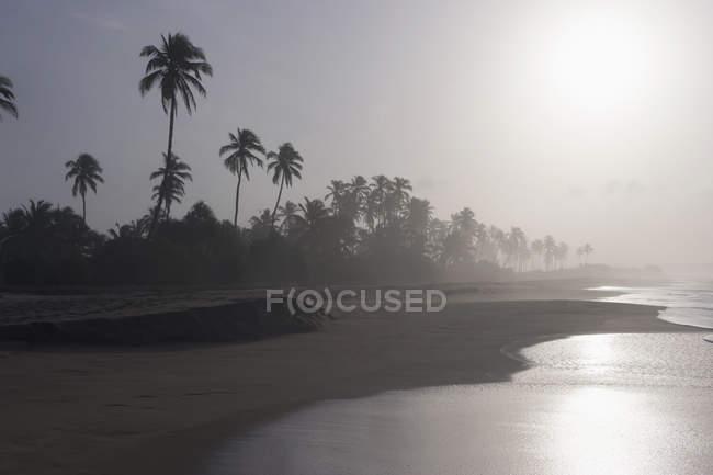 Vista panorámica de playa durante el atardecer - foto de stock